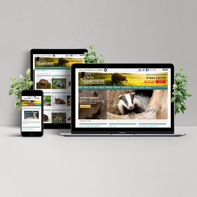 St Tiggywinkles Website Design Development Holly Small Design